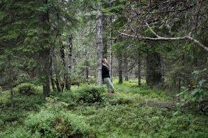 Paljakanvaara, Hyrynsalmi 2016. Valokuvat: Hanna Koikkalainen